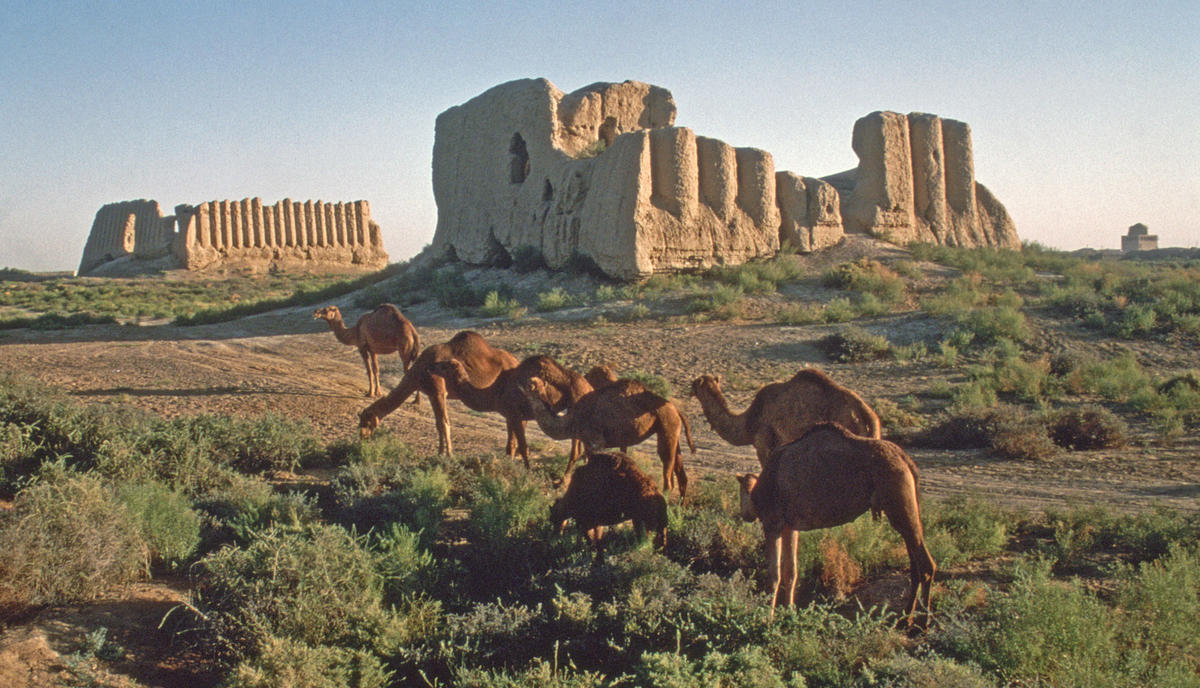 Merv Archaeological Site